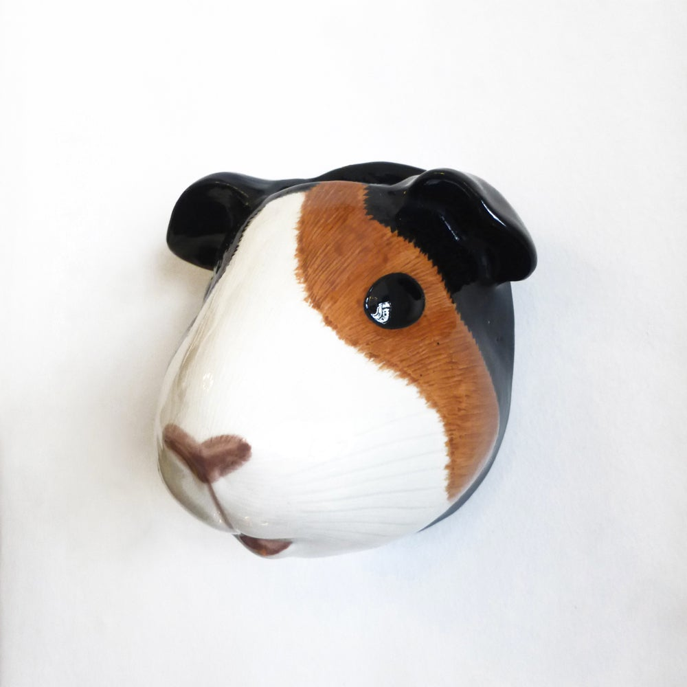Image of Guinea Pig Wall Vase