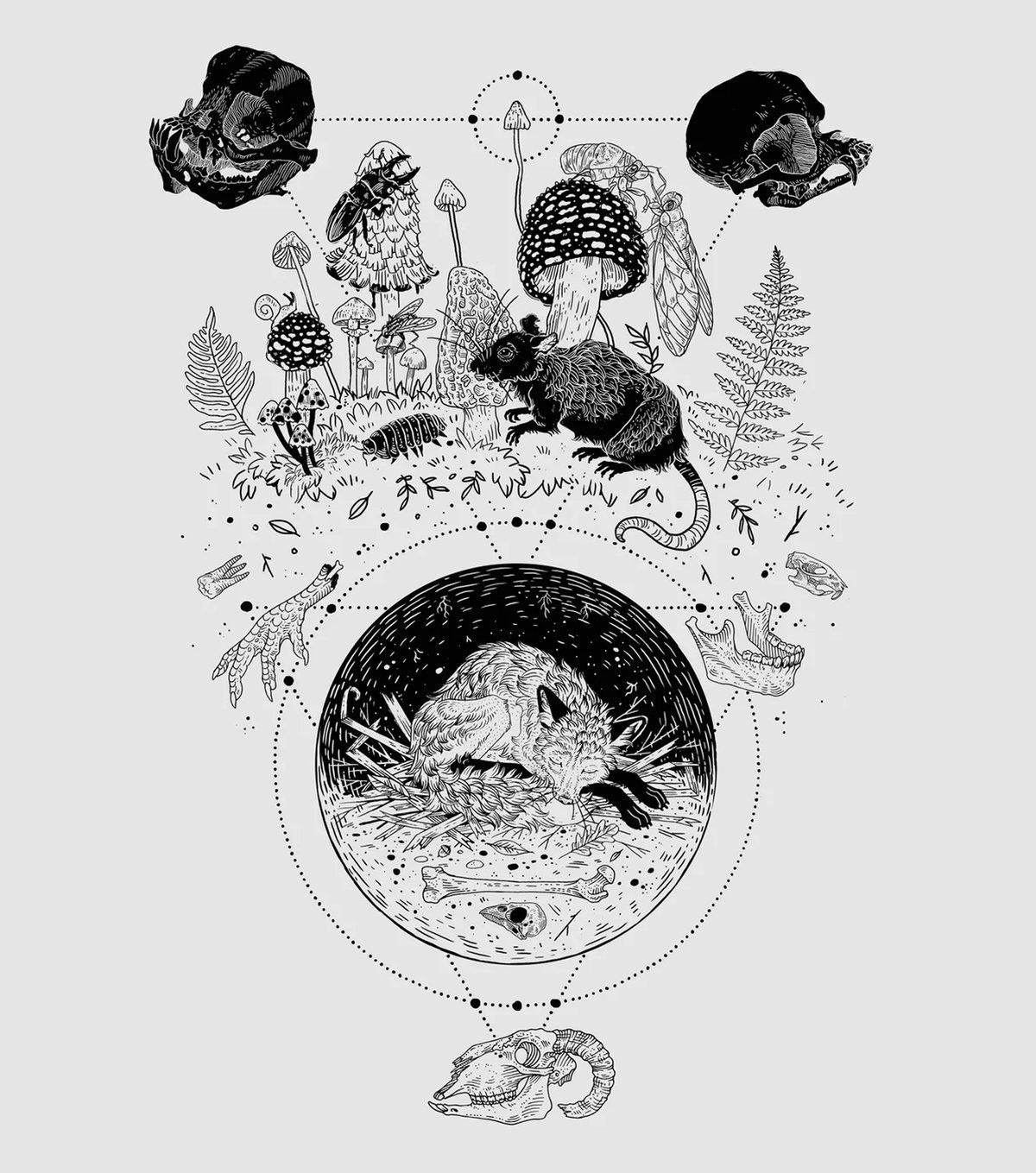 "Image of Metamorphosis 16x20"" Giclee Art Print"