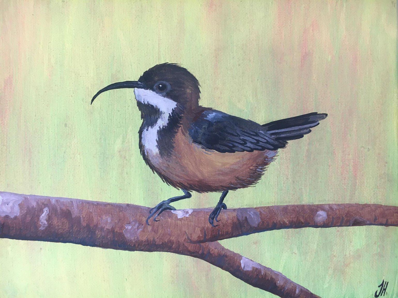 Image of Eastern Spinebill Original Painting