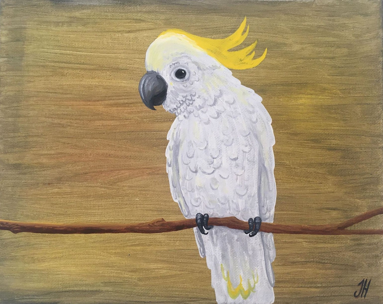 Image of Sulphur-crested Cockatoo Original Painting
