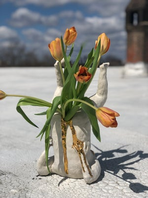 Image of 15 inch Vass!