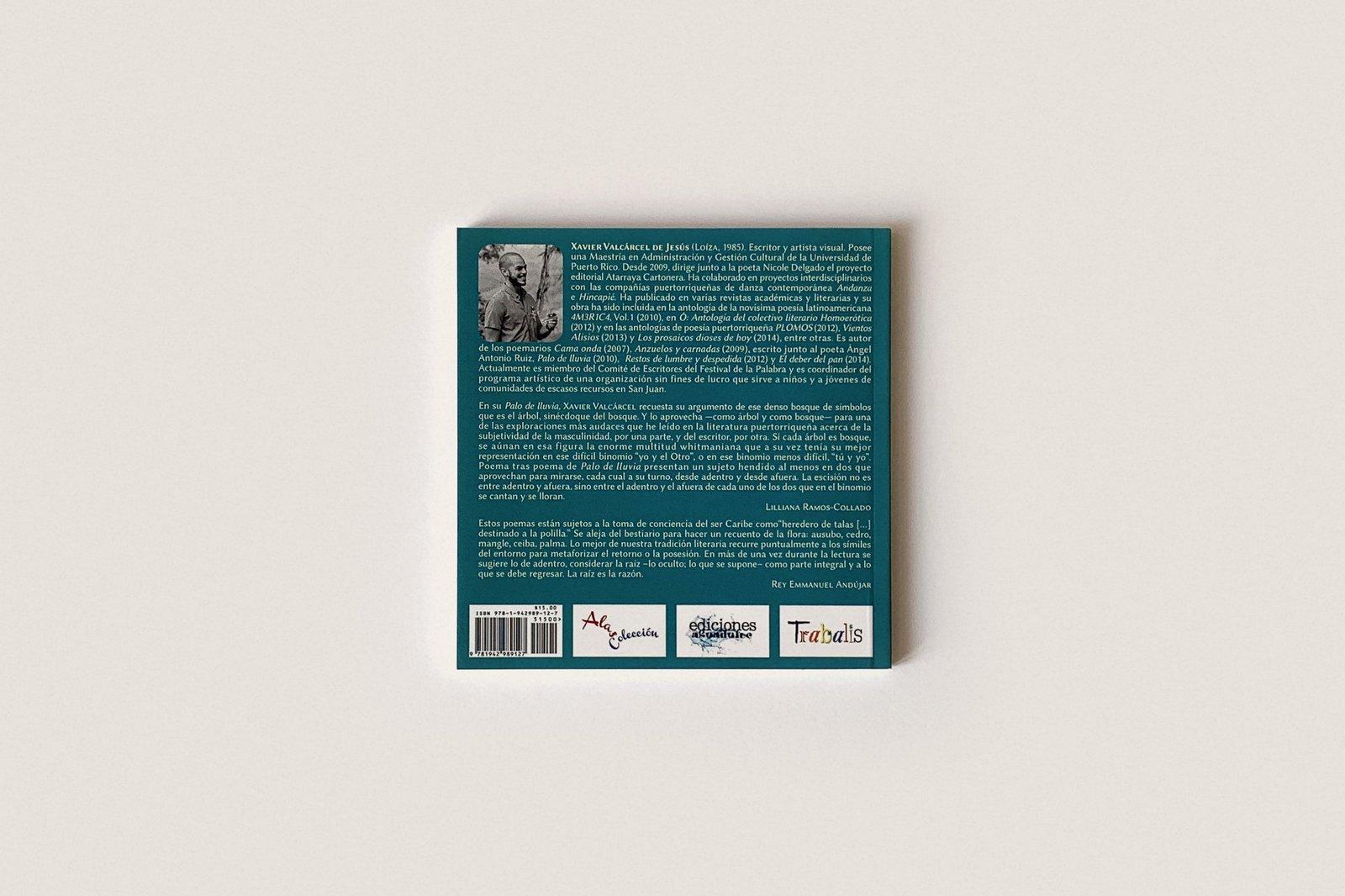 Libro: Palo de Lluvia — Xavier Valcárcel