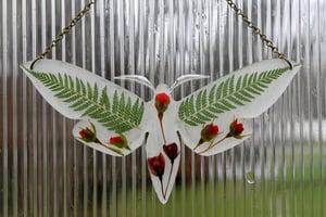 Image of Pressed Flower Moth #2