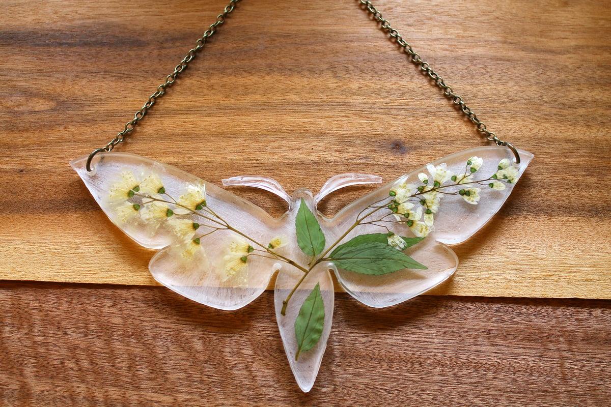 Image of Pressed Flower Moth #3