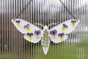 Image of Pressed Flower Moth #7
