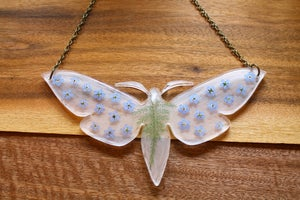 Image of Pressed Flower Moth #8