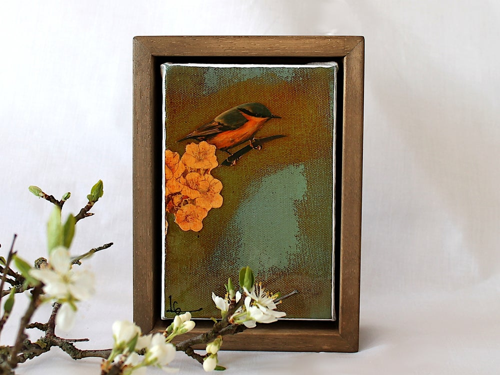 "Image of Original Framed Canvas - 4"" x 6"" - Nuthatch"