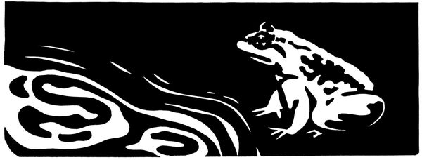 Image of Poetry Print - Basho's Frog