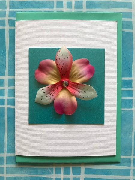 Image of Petals