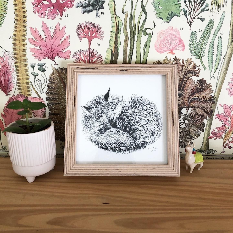 Image of Framed Red Fox