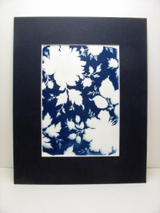 Image of Cyanotype Kit for ages 5 and up