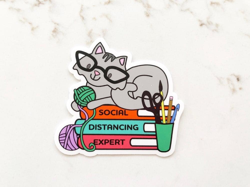 Image of Social Distancing Cat