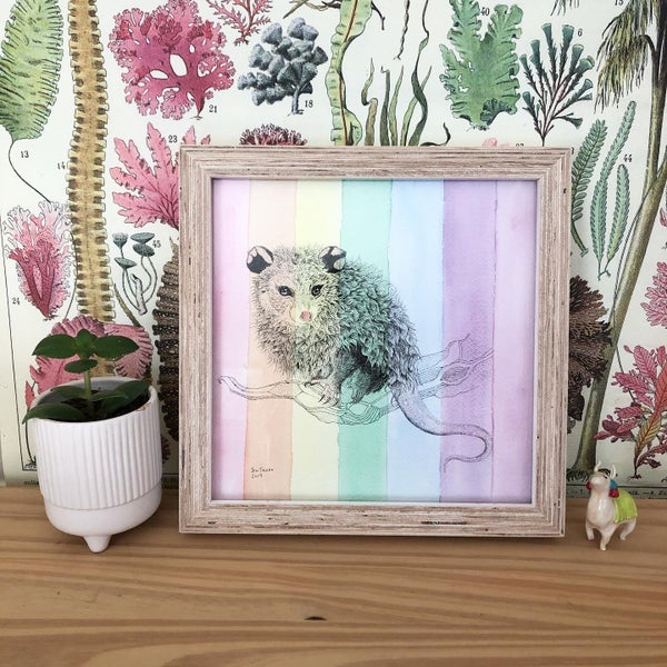 Image of Framed Pride Opossum