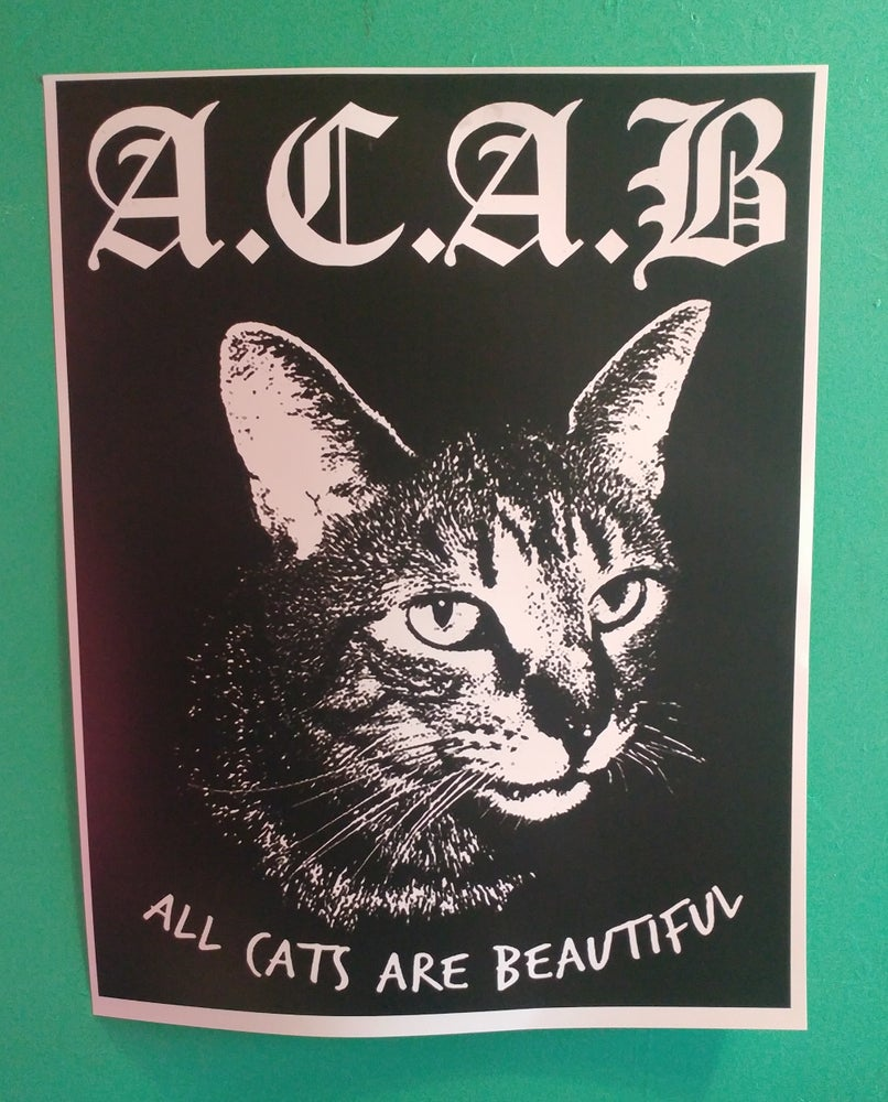 Image of ACAB cats poster 22x28