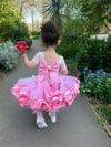 Mixed Pink & White Daisy Edge