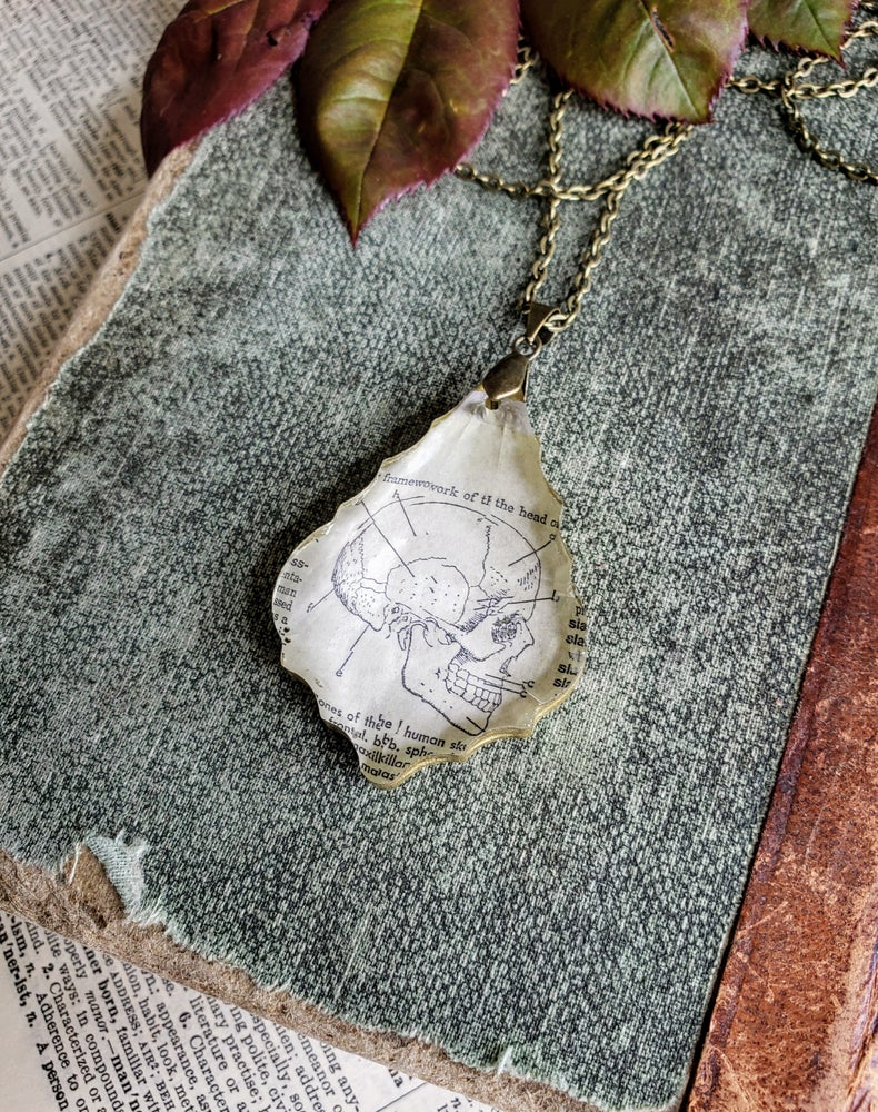 Image of Vintage Skull Book Page & Salvaged Chandelier Crystal Necklace