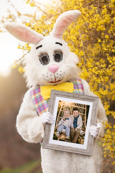 Image of Easter Bunny Digital Photograph