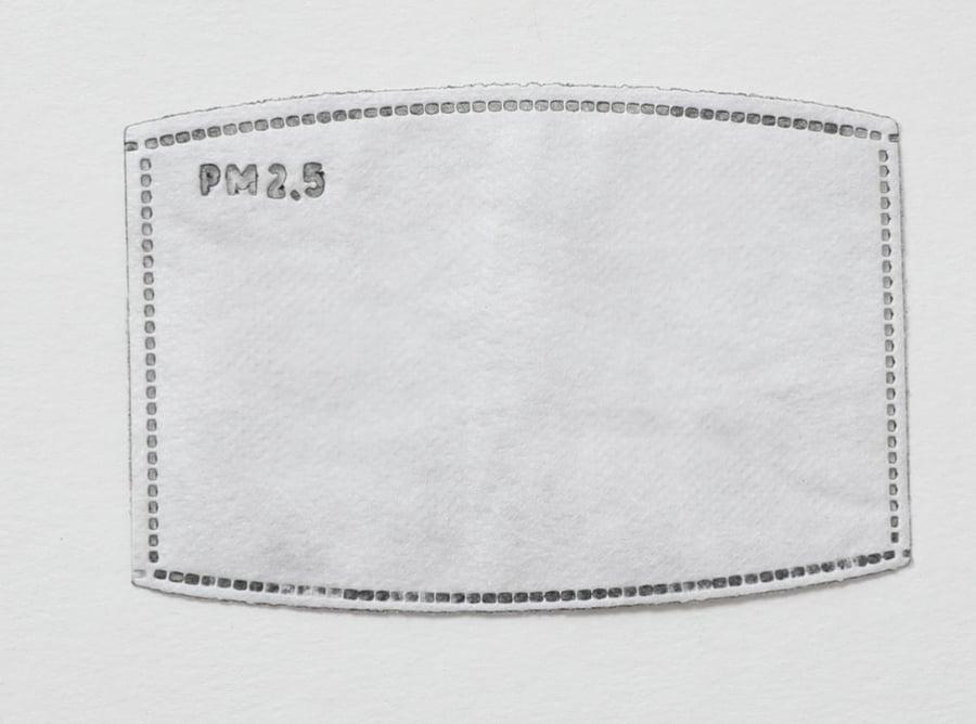 Image of Reusable Carbon Filter Pads