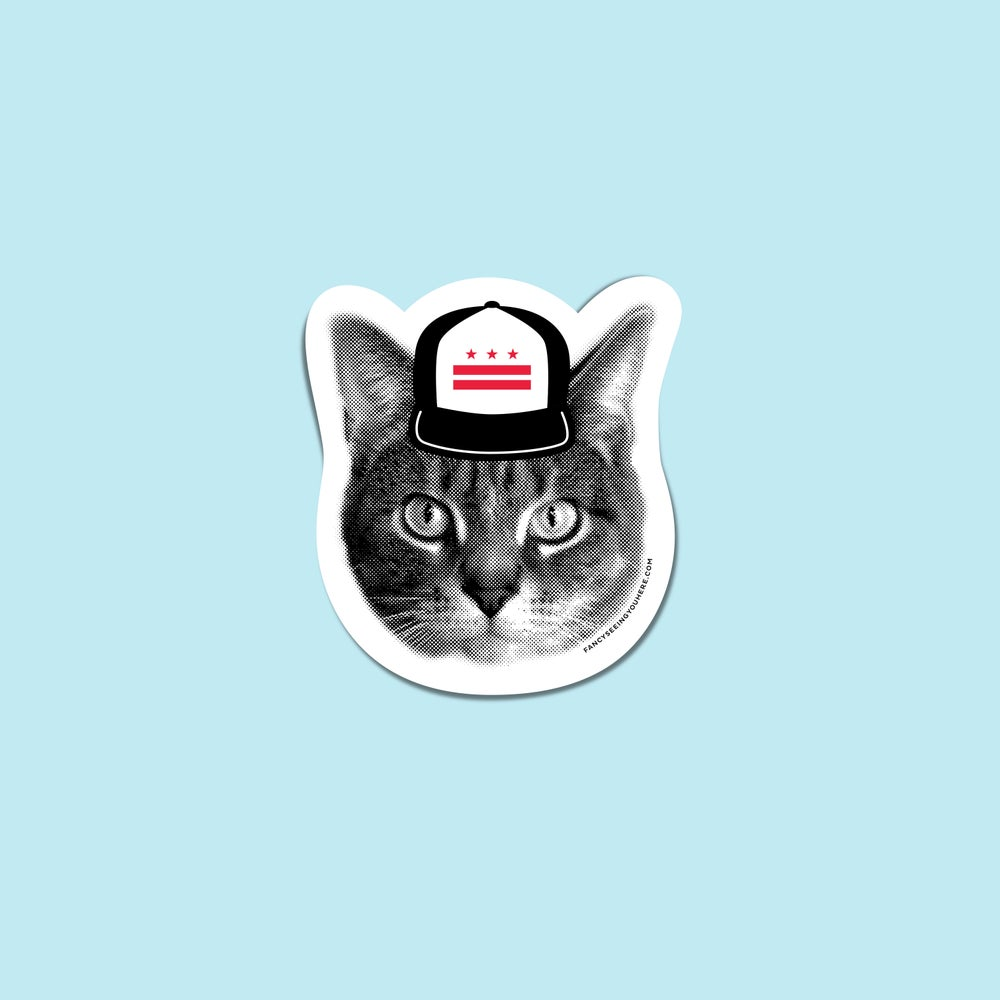 Image of gee whiskers: DC cat sticker or magnet - DC pride kitty - Washington DC - DC flag hat