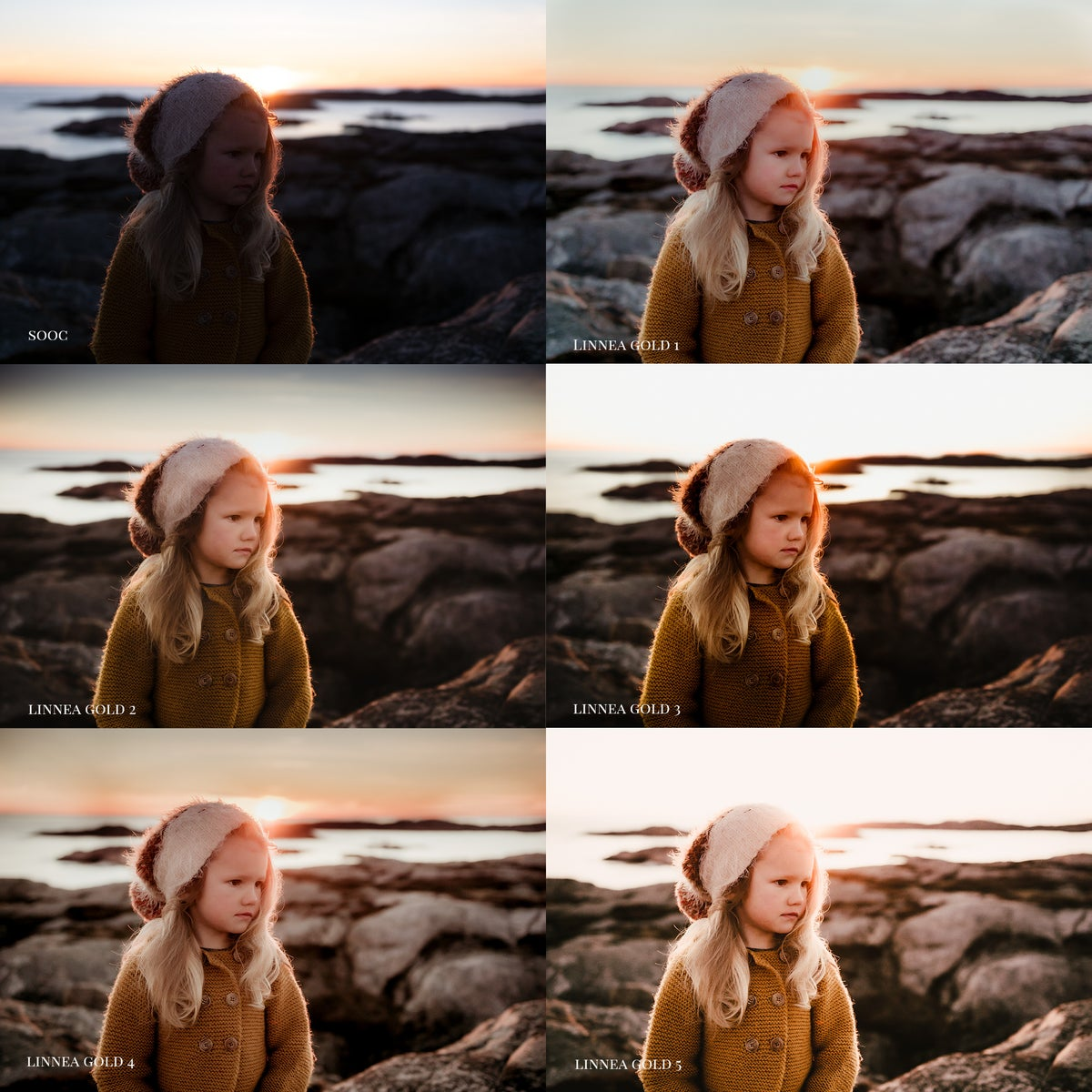 Image of Linnea Golden ACR presets and videos
