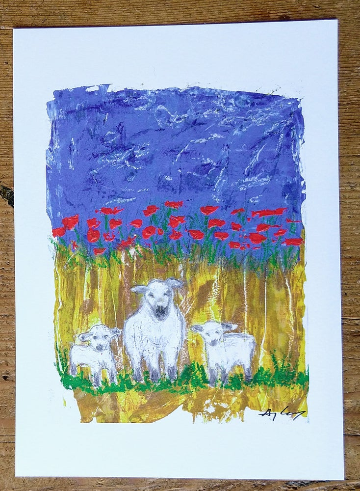 Image of Sheep in the Poppies