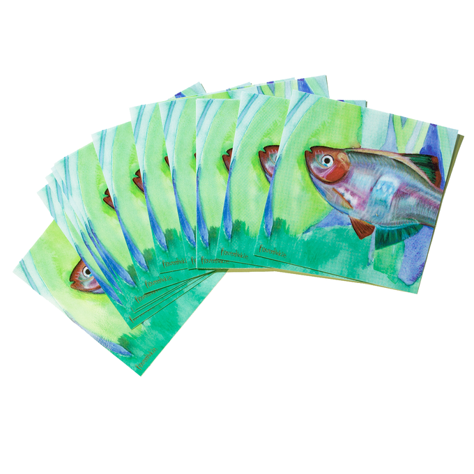 Image of Fish Stickers