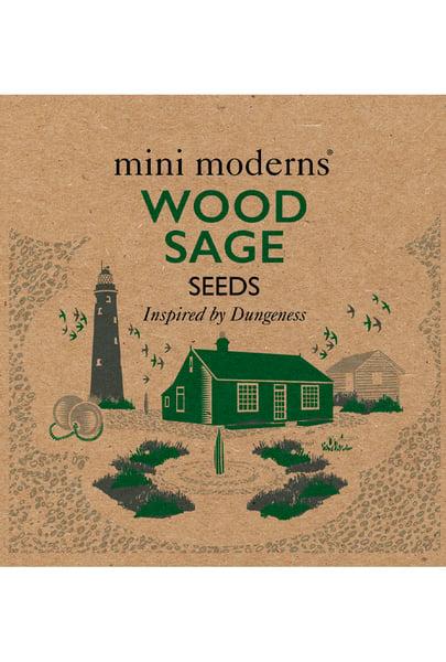 Image of WOOD SAGE SEEDS