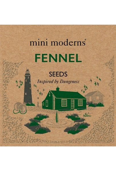 Image of FENNEL SEEDS