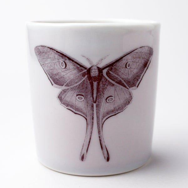 Image of 16oz tumbler with luna moth, lilac