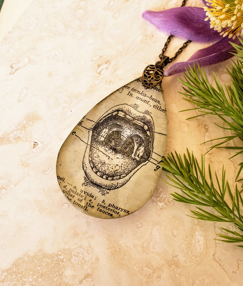 Image of Vintage Anatomical Medical Text Mouth Pendant Necklace