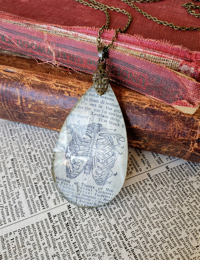 Image of Vintage Anatomical Medical Text Thorax Rib Cage Pendant Necklace