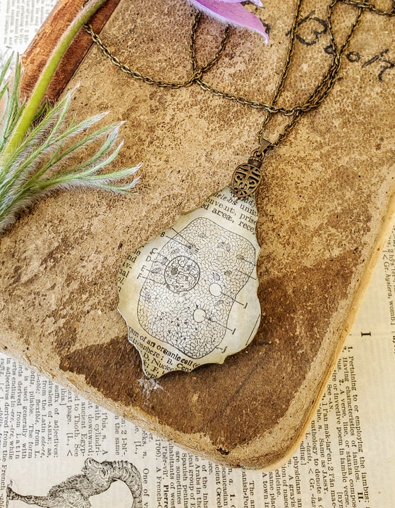 Image of Vintage Anatomical Medical Textbook Cell Science Pendant Necklace