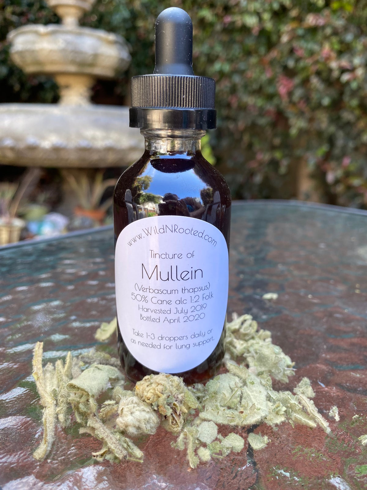 Organic Tincture of Mullein Leaf