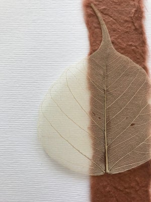 Image of Skeleton Leaf