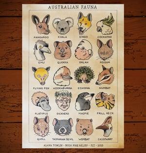 Image of Australian Fauna Bushfire Relief