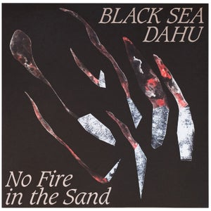 Vinyl No Fire in the Sand