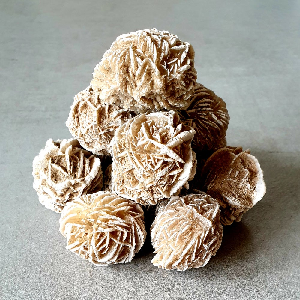 Image of SELENITE DESERT ROSE