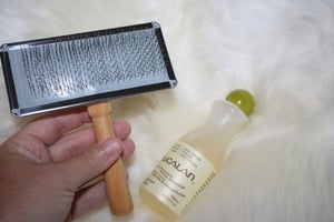 Image of WILMA - MEDICAL SHEEPSKIN WASH CLEANER AND BRUSH SET