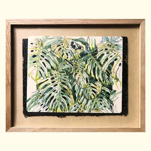 Image of Original painting - Feuillages de Monstera - 28x35 cm