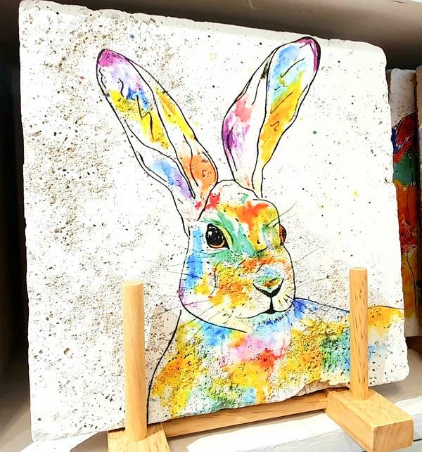 Image of Rainbow Hare Stone Mat