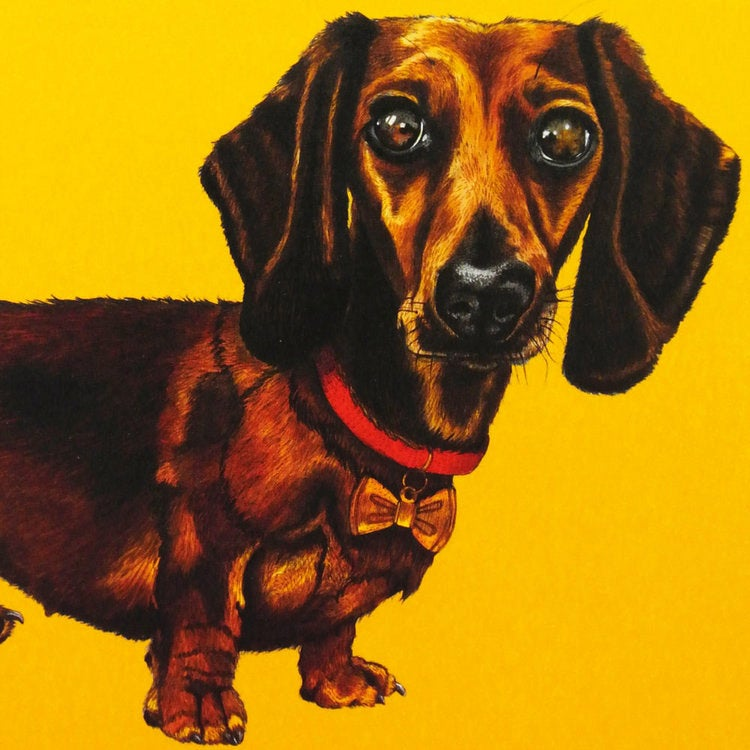 Image of Dachshund Card