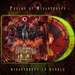 Image of A LOATHING REQUIEM - Psalms of Misanthropy | LP Bundle
