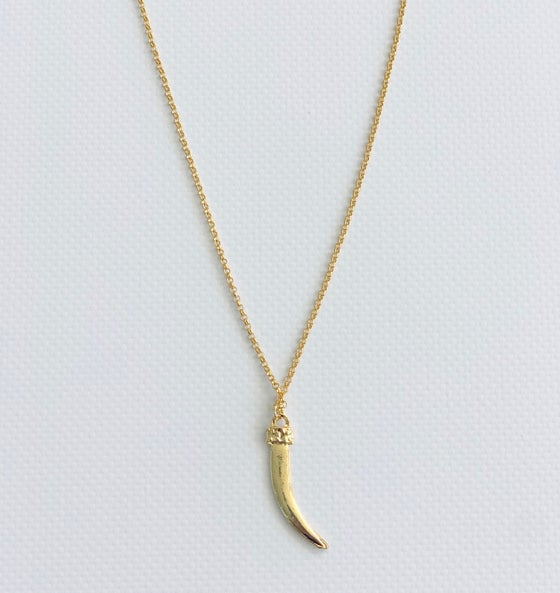 Image of Horn Single Necklace