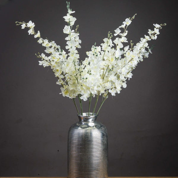 Image of White Delphinium