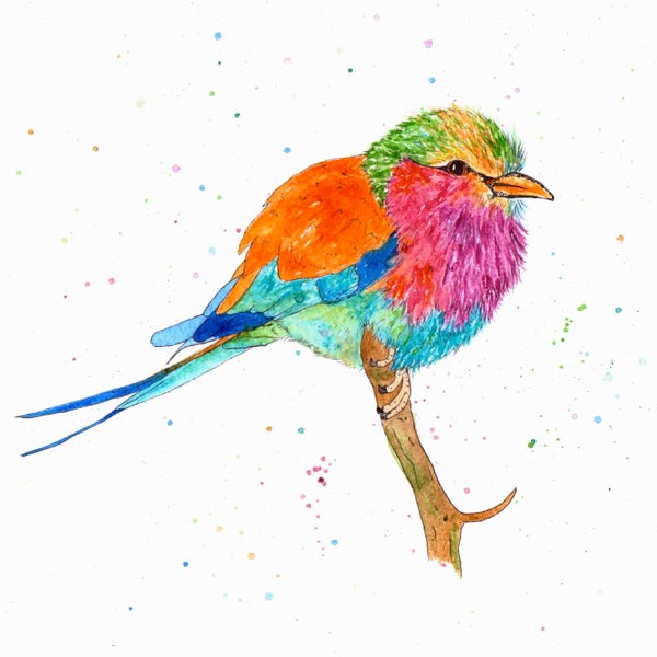 Image of Rainbow Bird Greeting Card