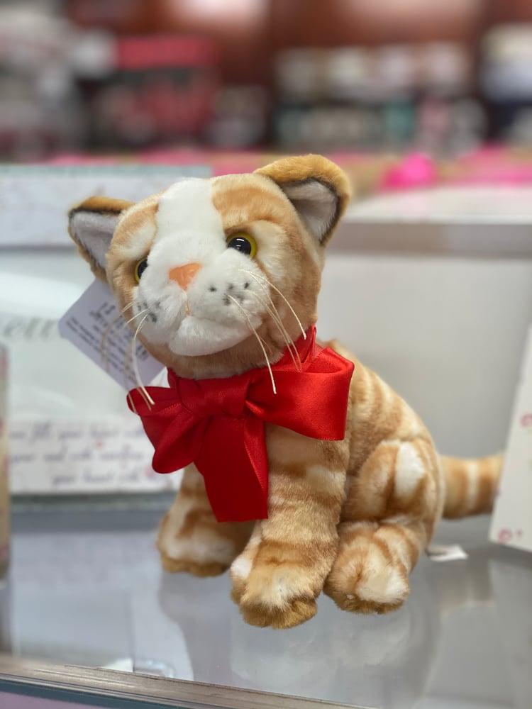 Image of Mothers Day Plush Kitten/Tiger