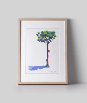 Image of Tree #342
