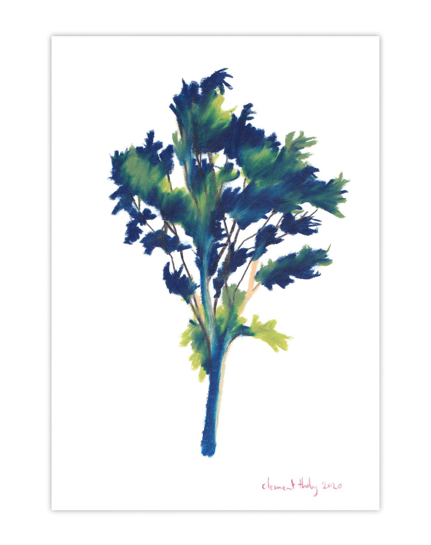 Image of Tree #421