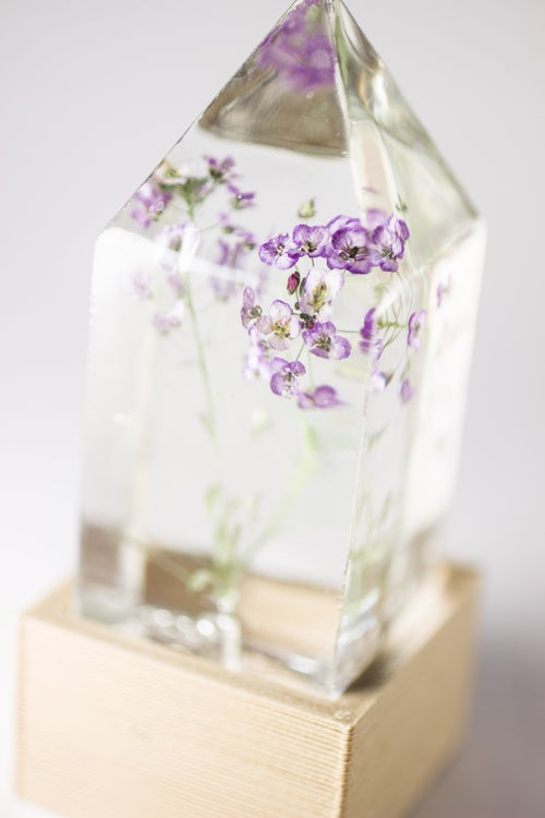 Image of Sweet Alyssum (Lobularia maritima) - Floral Prism Desk Light #1