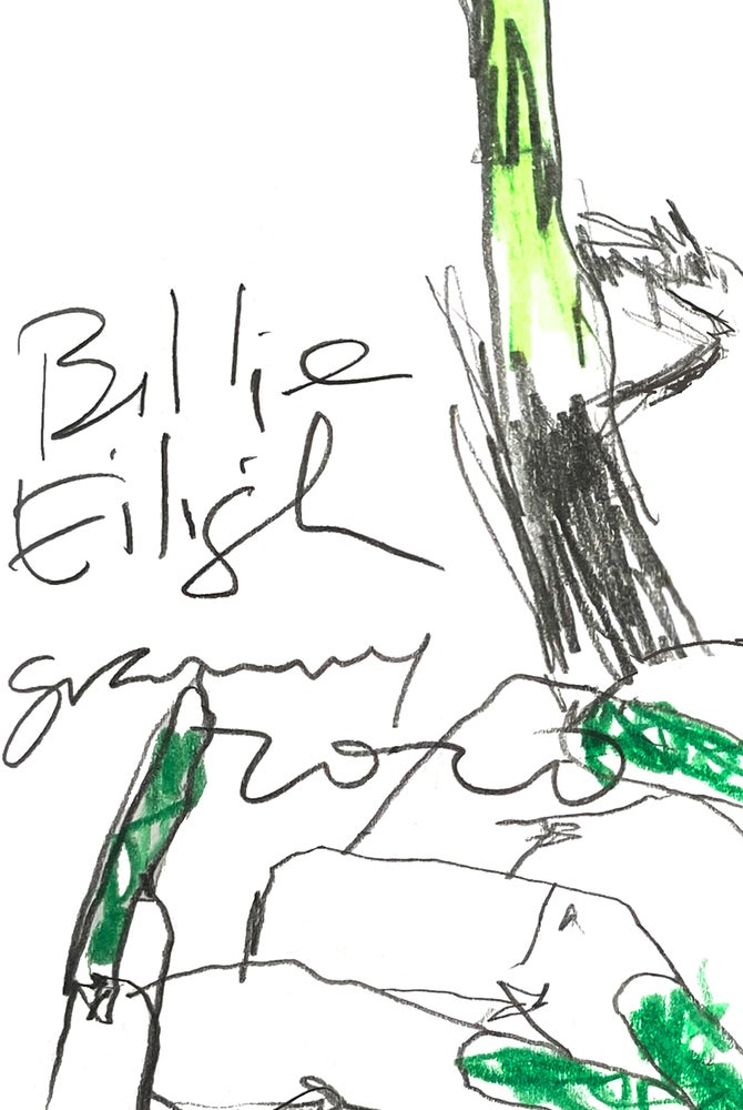 Image of Billy Eilish Grammys2020